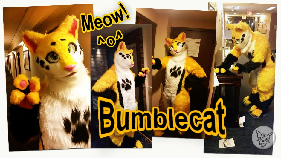 Bumblecat, fursuit