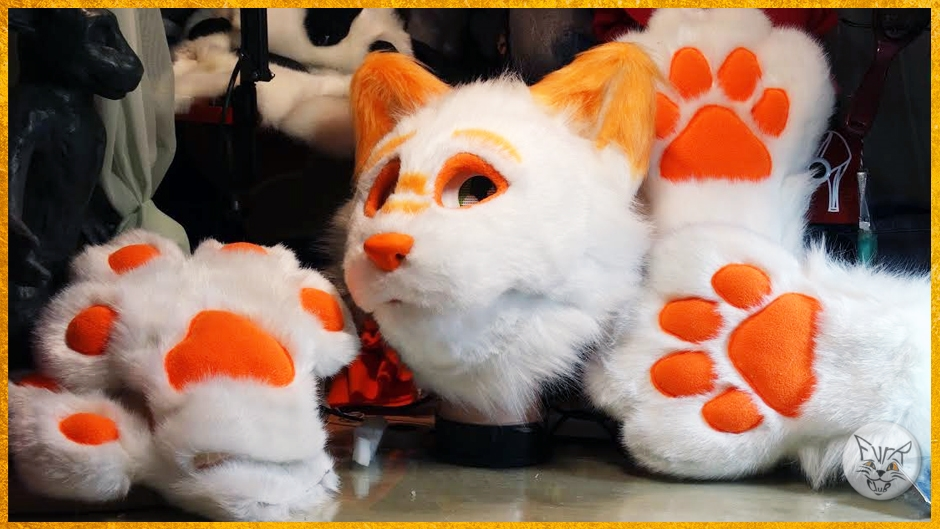 Head and handpaws and feetpaws