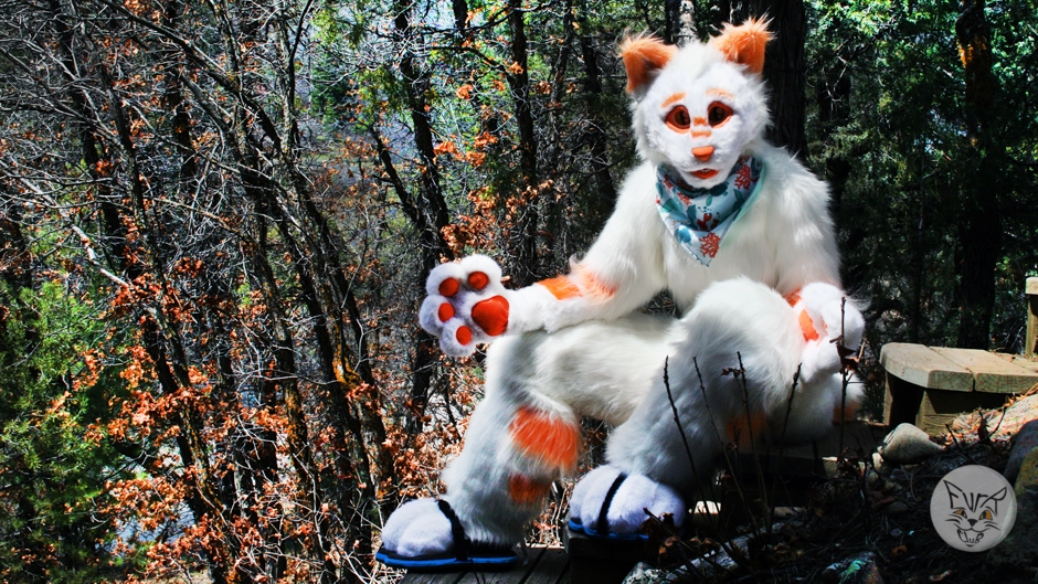Ari The Bobcat, fursuit