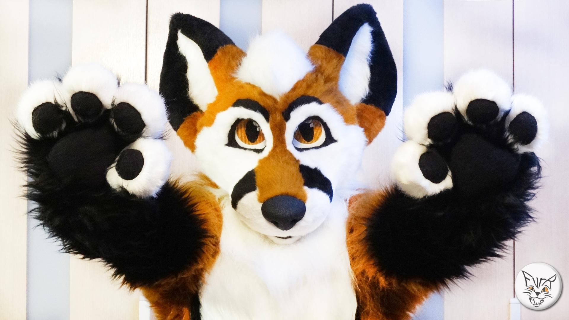 ToonyFox fursuit from FurR.CluB!