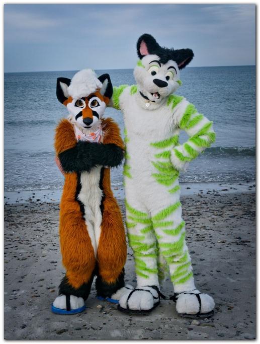 #Dolos_the_Fox #foxfursuit #furr_club #fursuit