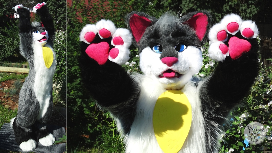 GrayCat, fursuit