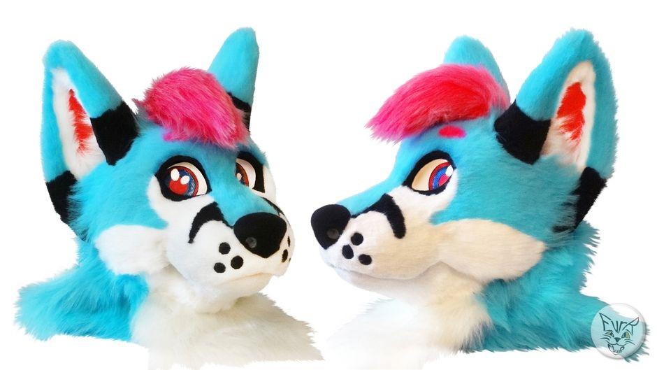 Project details for fox ReiJi