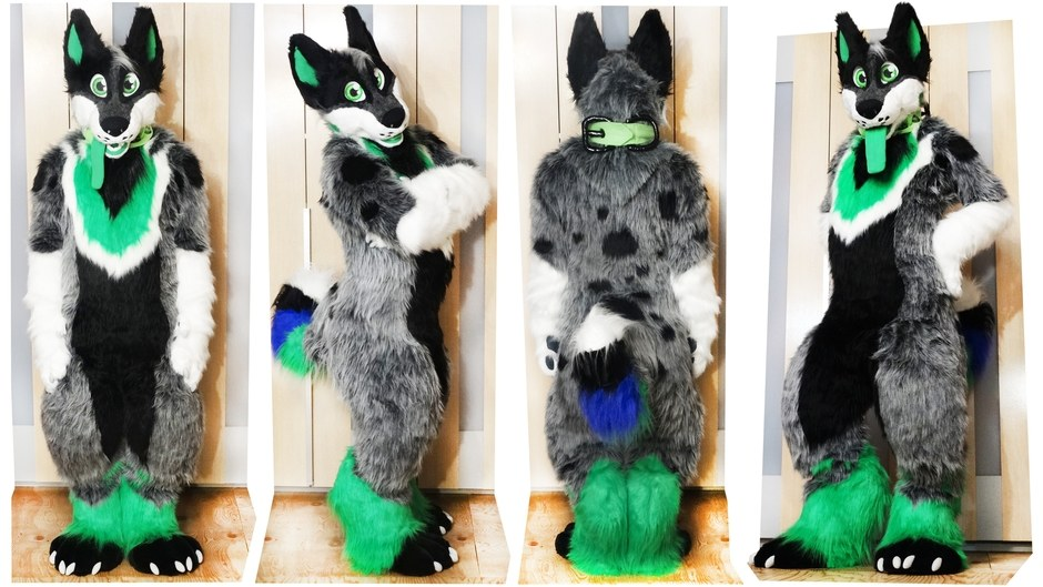 full fursuit of Dogy character