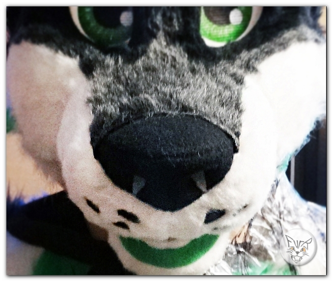 #FurRCluB #Grayish_Green_Dog_Fursuit #Manufacture #Nose