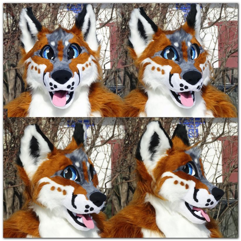 Fursuit's head #Fox #furr_club #fursuit #foxfursuit