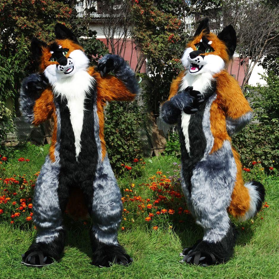 #Fox_Grey #furr_club #fursuit #Woflie Fox