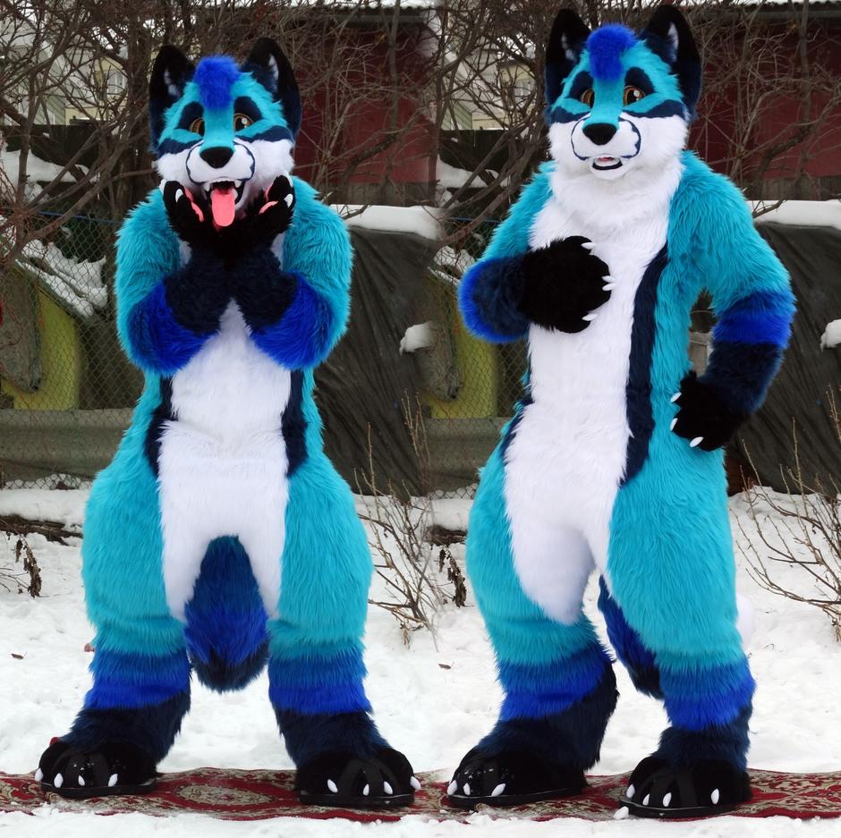 #Kacec #furr_club #fursuit #furrclub #Kacec The Fox