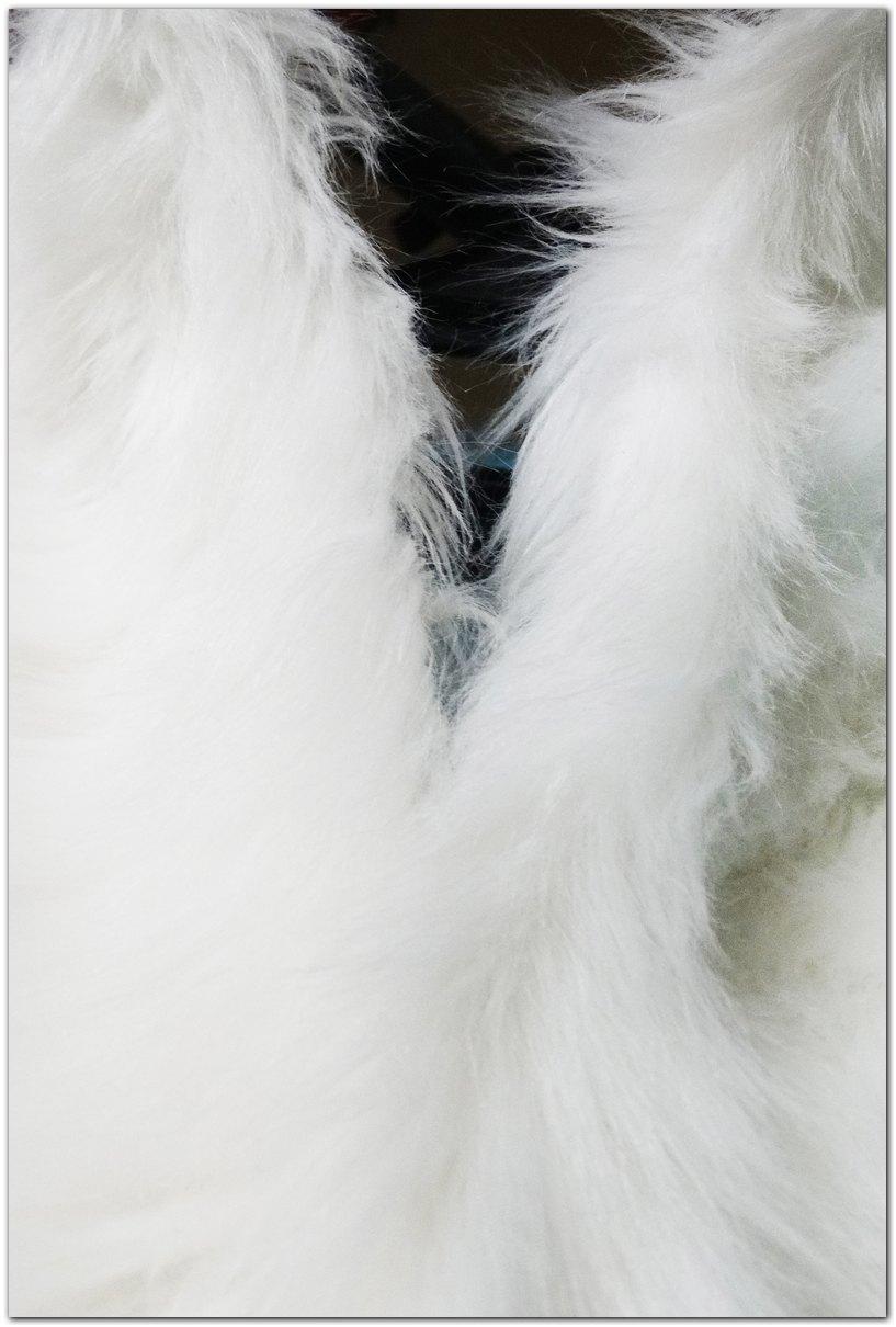 The zipper of fursuit #Kacec #foxfursuit #furr_club #fursuit #furrclub