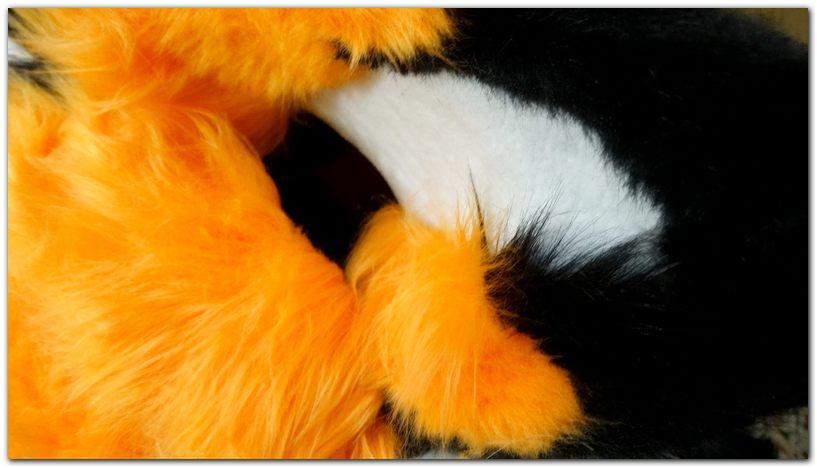 Ears #Tzyko #Fox #furr_club #fursuit #furrclub #foxfursuit