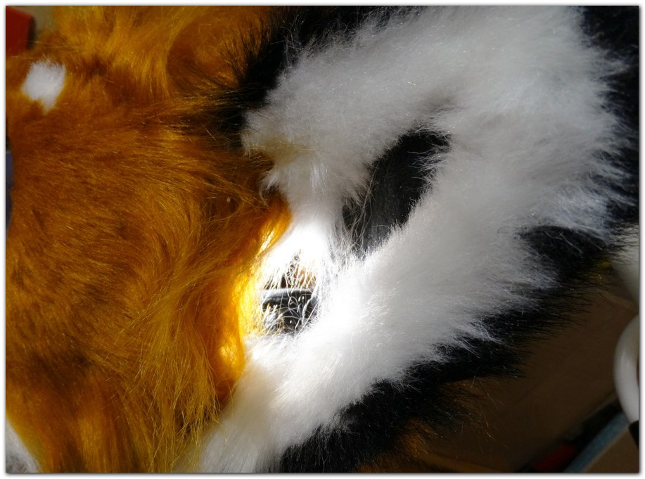 Ears for Classic Fox fursuit project #Foxfursuit #furr_club #fursuit