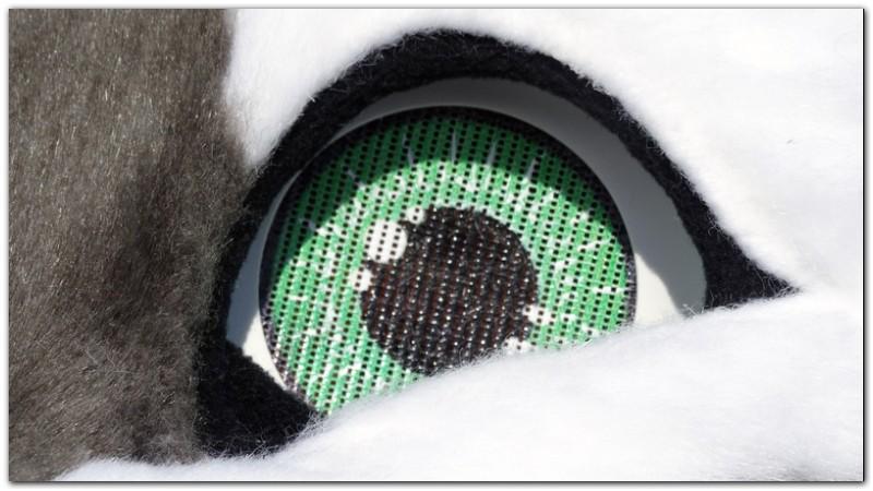 Head for fursuit project Hare #Thumper-The-Hare-fursuit #furr_club #fursuit
