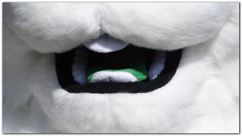 Tongue for Hare fursuit project #Thumper-The-Hare-fursuit #furr_club #fursuit