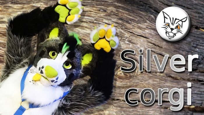 Project details of Silvery Corgi