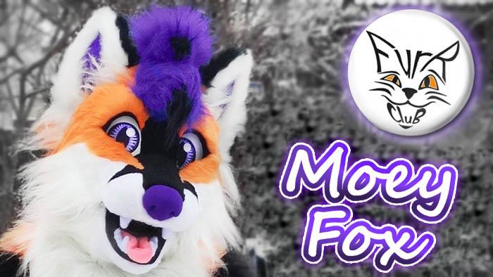 Fursuit project Violetpaws Fox